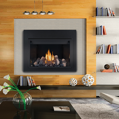 Fireplace Definition: Direct Vent Fireplace High Definition™ 46